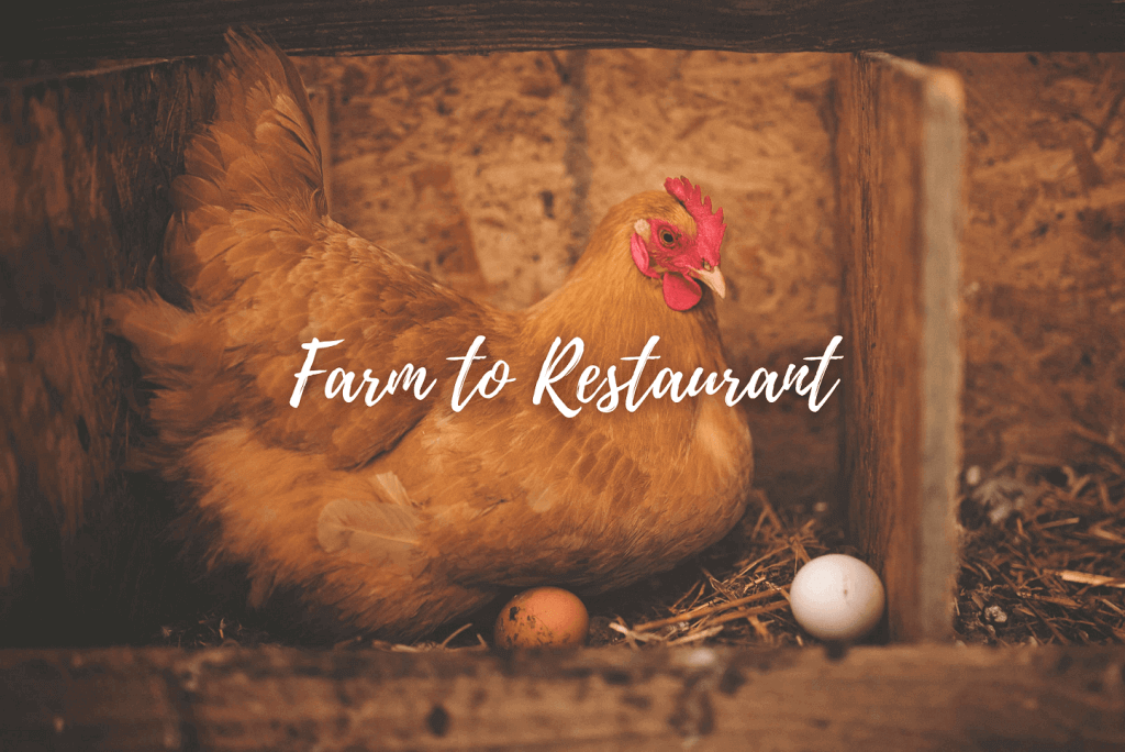 What is Farm-to-Table?